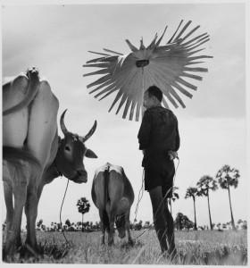 ワーナー・ビショフ《ヤシの葉を日傘にする農夫、カンボジア》1952年 ⒸWerner Bischof / Magnum Photos