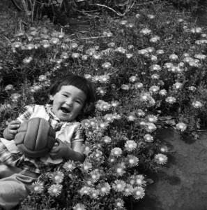 花壇での遊び、パラナ州ロンドリーナ、シャカラ・アララ、1950年頃 ⒸHaruo Ohara/Instituto Moreira Salles Collection