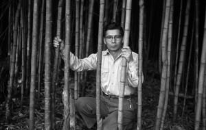 セルフポートレイト:富田農園の竹林にて、パラナ州ロンドリーナ 1953年  ⒸHaruo Ohara/Instituto Moreira Salles Collection