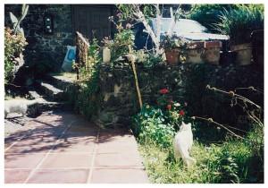 アルバレス・ブラボ邸中庭