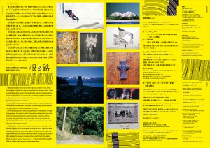 ae2016_A3_leaflet のコピー 2-2